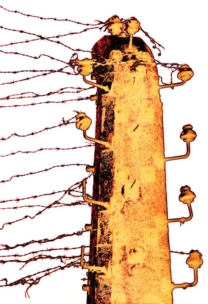 2004 Auschwitz-Birkenau
