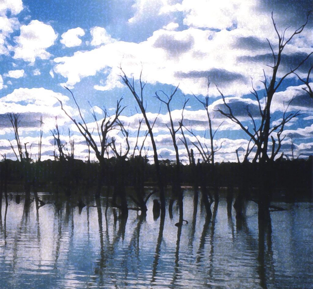 2007 Verdronken